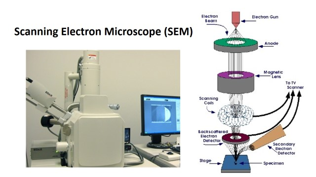 SEM5 - Principle Of Electron Microscopy And Its Applications