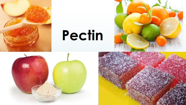 Pectin - Bioscience Notes